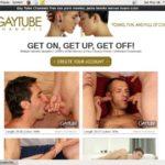 Get Free Gaytubechannels.com Passwords