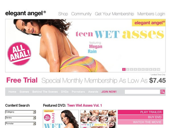 Get Elegantangel Account