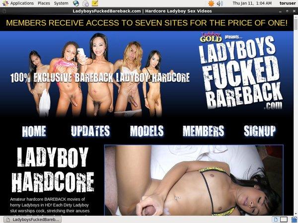Ladyboysfuckedbareback.com Cheaper
